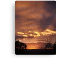 Don't Blink, you'll miss it! Canvas Print