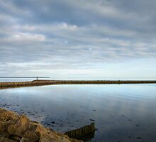 Wexford Harbour by Ian Middleton