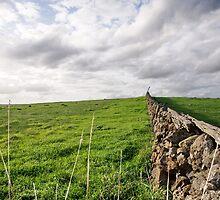 Stone Wall by Arthur Koole