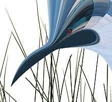 Blue Webbed Crane by Peter Stratton