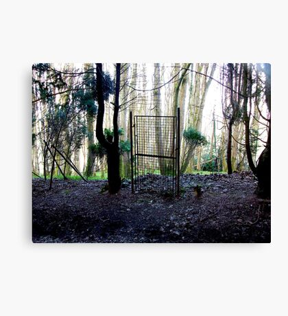 How surreal is the reality Canvas Print