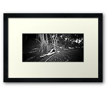 snake one Framed Print