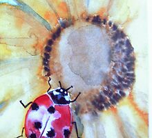 When you see a Lady-bug spring is near by Heidi Mooney-Hill