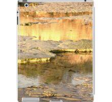 Glowing reflection iPad Case/Skin