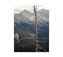 Banf Landscape Photographic Print