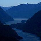 Doubtful Sound by Ian Sanders