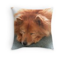 'Snoozing Cindy' Throw Pillow