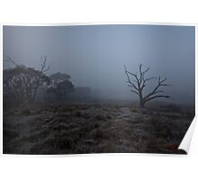 Winter Morning Fog at the Pinnacle in Canberra/ACT/Australia (3) Poster