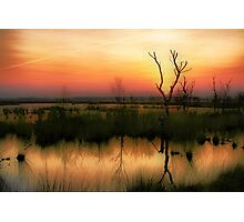 Sunset in the Wetland Fochteloerveen Photographic Print