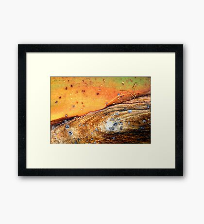 Whist 'n Weary Framed Print