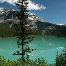 Emerald lake by JimSanders