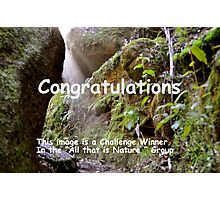 """""""All That is Nature"""" Challenge Banner Photographic Print"""