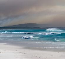 The Dunes at Noordhoek Beach by Neil  Bradfield