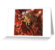 my spidy senses are tingling! Greeting Card