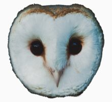 The Face of a Barn Owl Kids Clothes