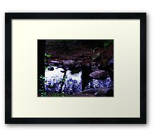Quiet afternoon Framed Print