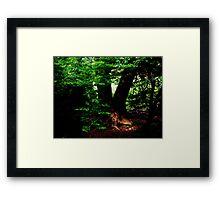Robin Hoods first home Framed Print