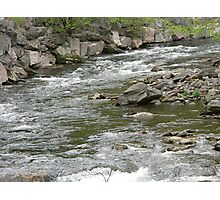 Trout river in the Great Smokey Mountains Photographic Print