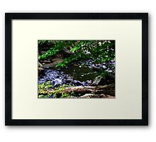 No Amount Framed Print