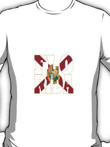 Florida state flag typography T-Shirt