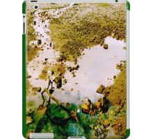 Pool of Life iPad Case/Skin