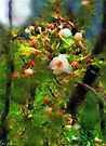 Apple Tree in April by RC deWinter