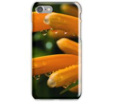 Trumpet Vine Blossoms in the Rain iPhone Case/Skin