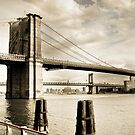 Stellar- Brooklyn Bridge by JennyChesnick