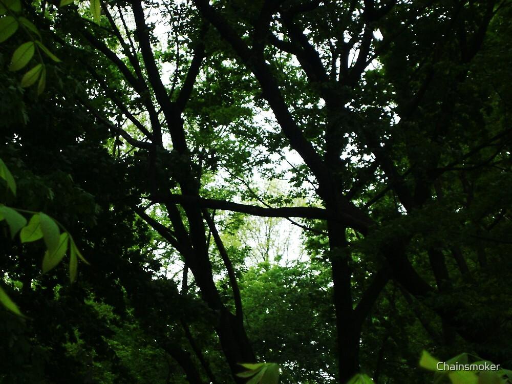 Jungle planet by chainsmoker redbubble - Plante jungle ...