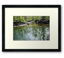 Green Ravine Framed Print