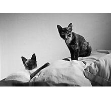 Bella and Lolita 01 Photographic Print