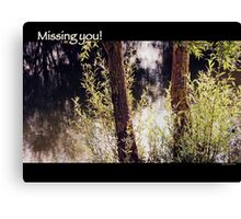 Missing you! Canvas Print