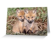 """""""Warning"""" Cuteness Advisory Is In Effect Greeting Card"""