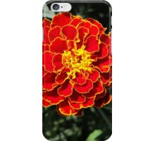 dark orange marigold iPhone Case/Skin