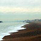 Brighton Beach and Old Pier Spring 2010 by blindskunk