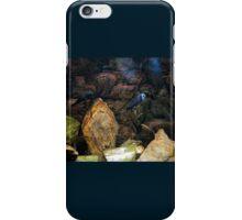 Aquarium stones arrangement iPhone Case/Skin