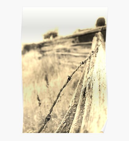 fence and field Poster