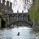 Punting on the River Cam, Cambridge Spring 2010 by blindskunk