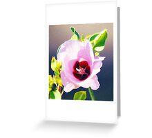 Sturt's Desert Rose Greeting Card