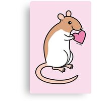 Sweet Ratty Valentine  Canvas Print