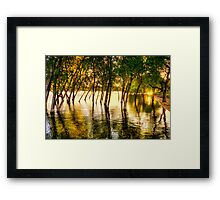 Tree Flood Framed Print