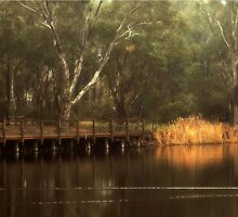 The Viewing Bridge, Kennington Resevoir By Lorraine McCarthy by Lozzar Landscape