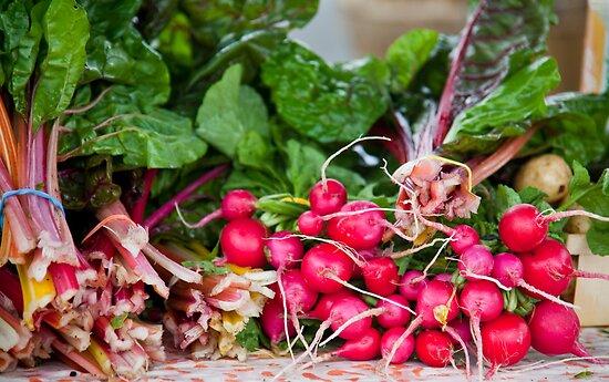 Radishes & Rhubarb by phil decocco