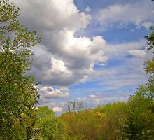 Beautiful Sky by ECH52