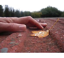 hand in nature after the rain Photographic Print