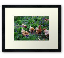 Tiptoe Through The Bluebells Framed Print