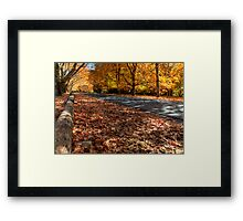 Mount Wilson The Glorious Colours of Autumn II NSW Australia Framed Print