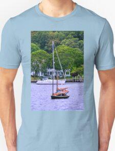 A Quick Walk (84 of 86) T-Shirt