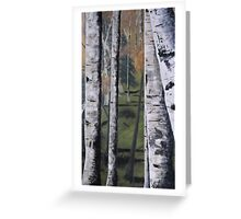 Forest Birches Greeting Card