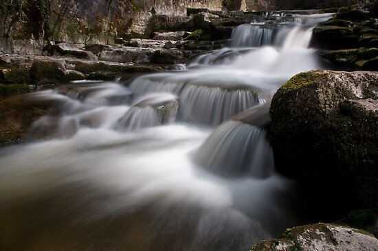 Lower West Burton stream by jamestphoto
